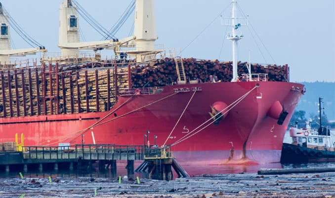 Novel attempt to get around the deck cargo exclusion fails